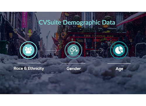 Dive into Demographic Data with CVSuite