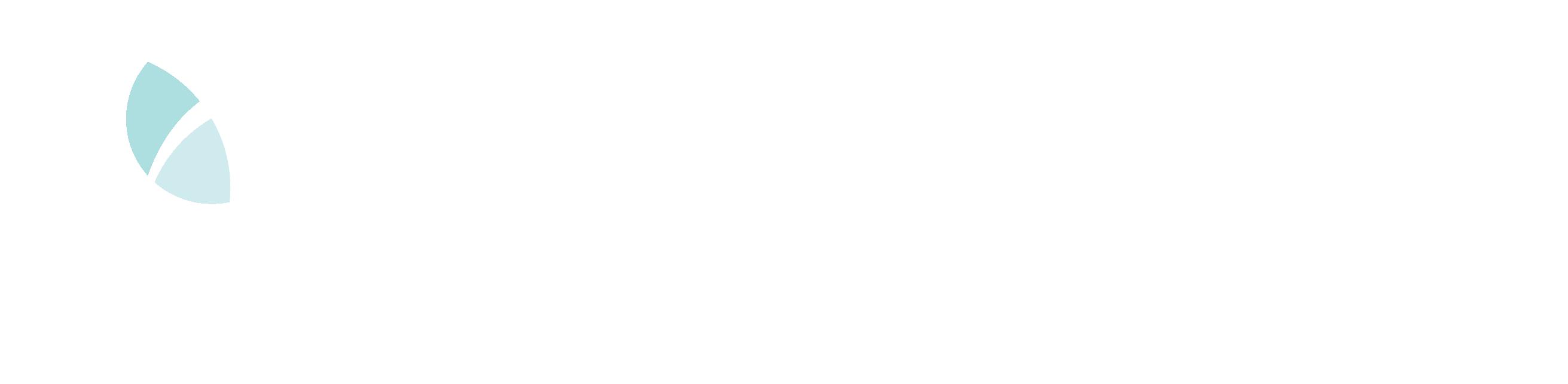 Logo for CVSuite.