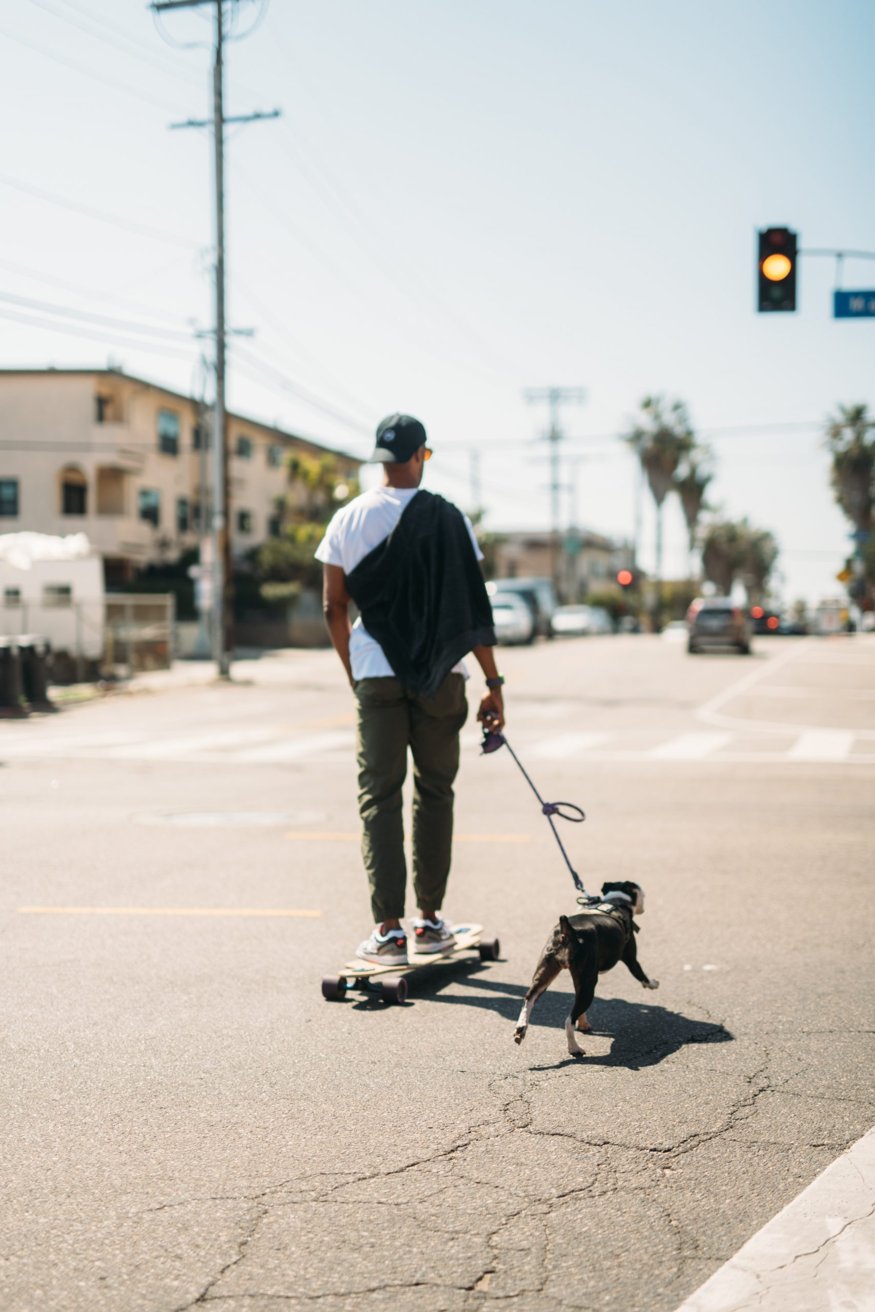 Guy walking his dog on the street